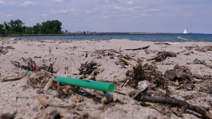 Plastic drinking straws litter the beach by the water