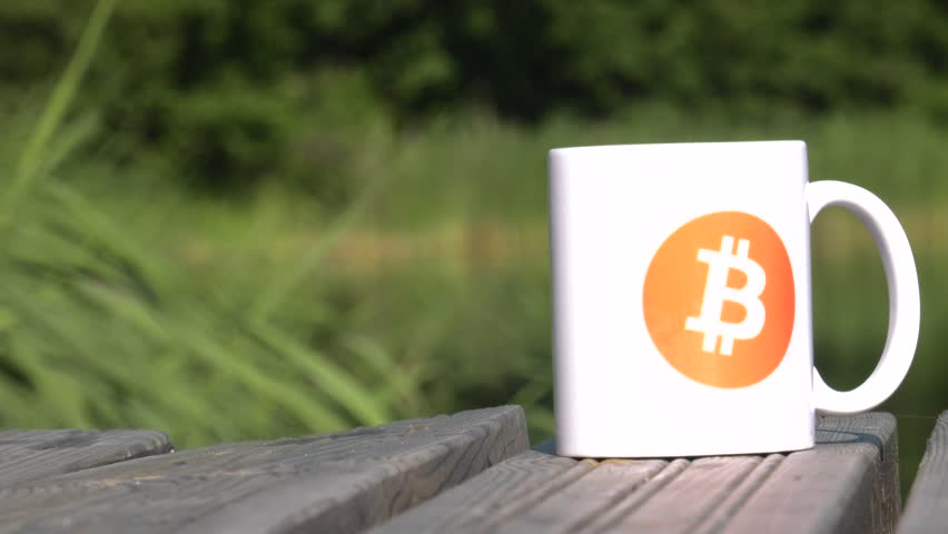 Calmness, Quiet, Safe haven. BTC coin as symbol of electronic virtual money for web banking and international network payment. White cup on the lake. Water and Trees. 4K, UHD. | Shutterstock HD Video #1013582459