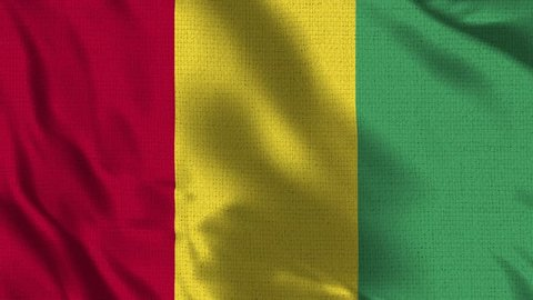 Guinea Flag Loop - Realistic 4K - 60 fps flag of the Guinea waving in the wind. Seamless loop with highly detailed fabric texture. Loop ready in 4k resolution
