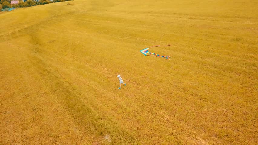 Aerial View, happy child flies with them kite on summer sunny day, landscape view in field with blue sky | Shutterstock HD Video #1013671889