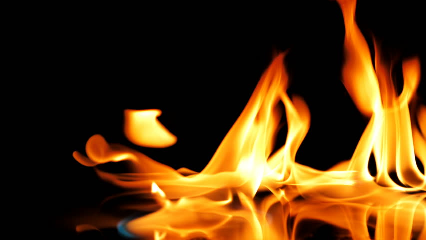 Fire Flames Igniting And Burning - Slow Motion. A line of real flames ignite on a black background. Real fire. UltraHD  | Shutterstock HD Video #1013824859