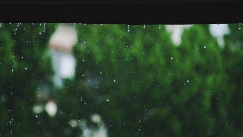 rain window weather nature storm wet umbrella