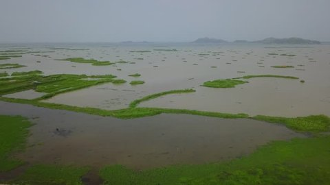 Ariel view of Loktak lake & Keibul lamjao area Manipur, India