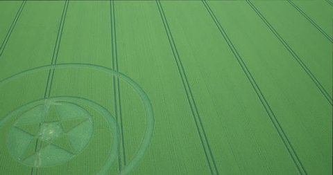 Crop circle in Wiltshire UK 2018, Hackpen Hill
