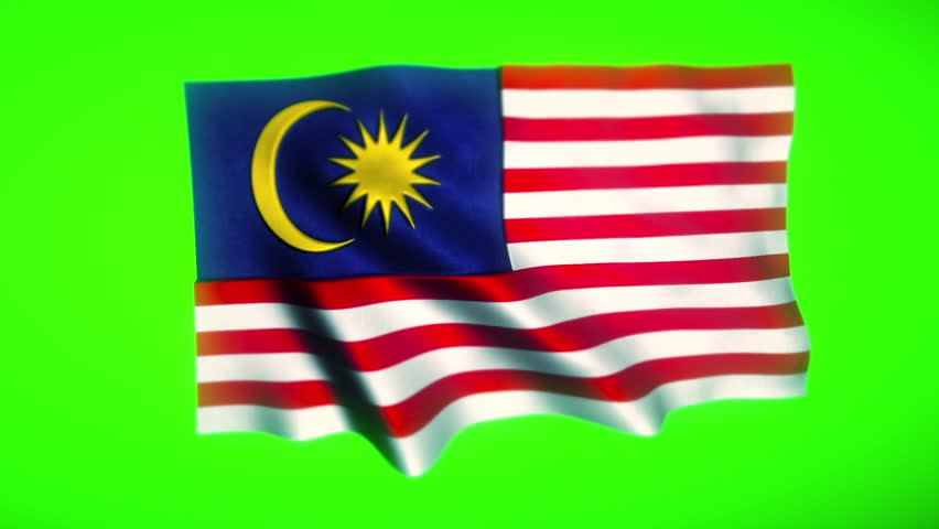 National flag of Malaysia waving in the wind - with green background animation, Photo realistic flag of the Malaysia waving in the wind with highly detailed fabric texture, keyable green screen