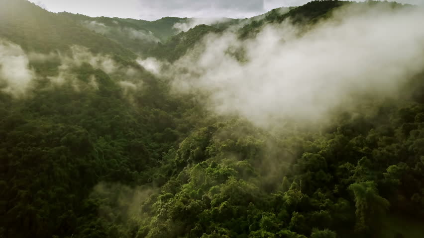 Aerial view of a village in the lush green rain cloud cover tropical rain forest mountain during the rainy season in the northern Thailand | Shutterstock HD Video #1014673619