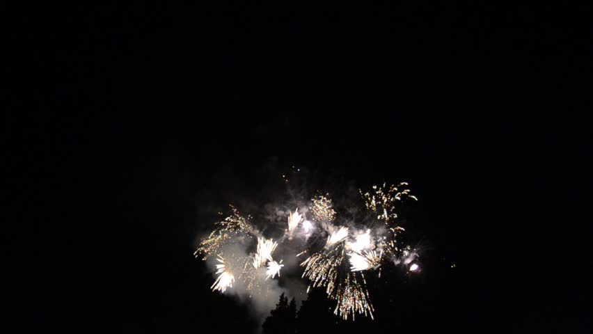 Colorful Firework lights in the night sky. Fireworks show.  New year's eve fireworks. Happy New Year. Pyrotechnics  #1014771539