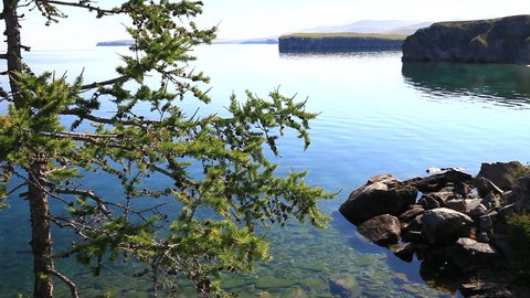 Summer sunny day on the shore of Lake Baikal. Beautiful coast with green larch. Natural sounds of water and birds