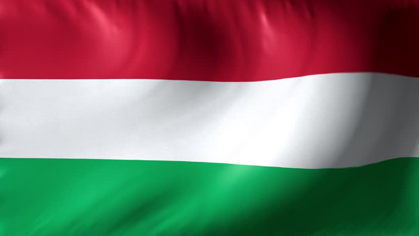 National flag of Hungary. Seamless looping 4k full realistic hungarian flag waving against background.