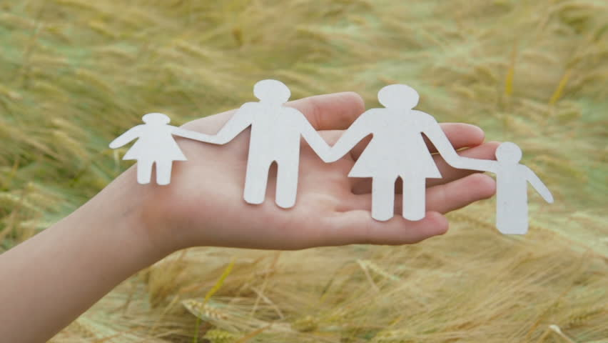 Family model in female hands against a wheat field background. | Shutterstock HD Video #1014964909