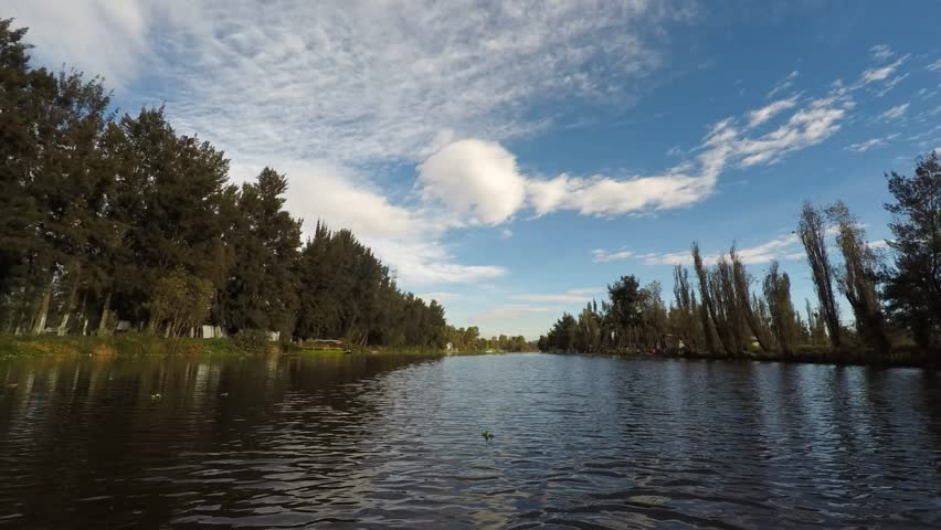 Hyperlapse while navigating in Xochimilco River with trees and some forest behind and birds flying in the sunrise in a clear and cloudy day.