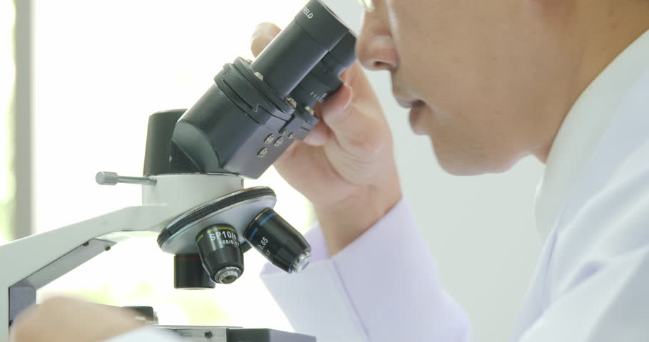 Medical research scientists in laboratory looking through a microscope. | Shutterstock HD Video #1015497079