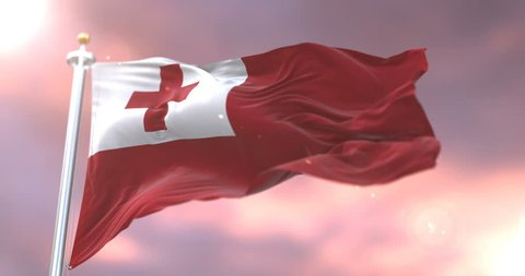 Flag of Tonga waving at wind in slow at sunset, loop