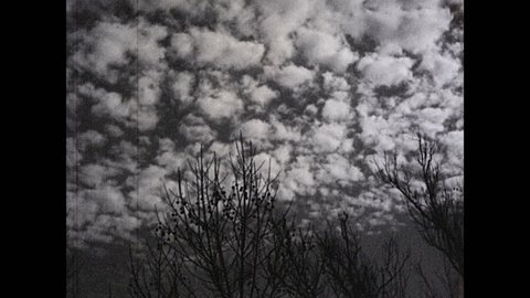 1930s: UNITED STATES: fluffy clouds in sky. Alto cumulus clouds in sky. Anvil cloud. Thunderhead cloud