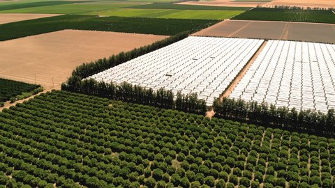Farming. Agricultural farming land growing fruit and vegetable crops. Aerial drone shot over fields in the California countryside. Rows of plants from above.