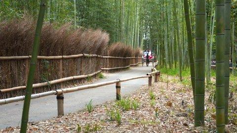 long shot of two tourists taking a rickshaw ride arashiyama bamboo forest, japan