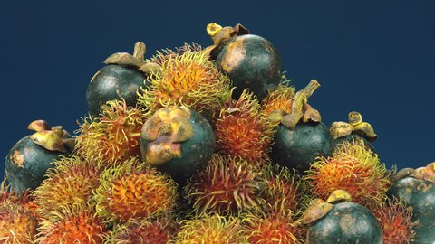 Rambutans and mangosteens on blue background in tropical fruits mountain