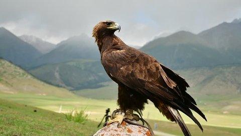 EAGLE SKY MOUNTAINS