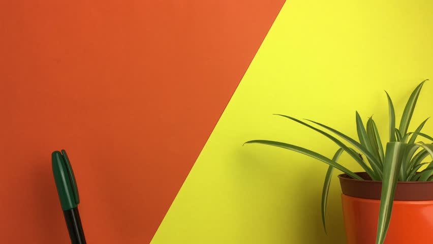 Paper notes that appear on the orange and yellow wall. | Shutterstock HD Video #1016465509