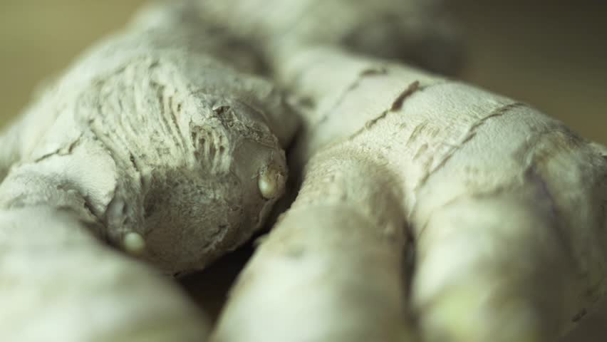 Ginger root extreme close up shot at wooden bowl. Ginger or ginger root is the rhizome of the plant Zingiber officinale, consumed as a delicacy, medicine, or spice.