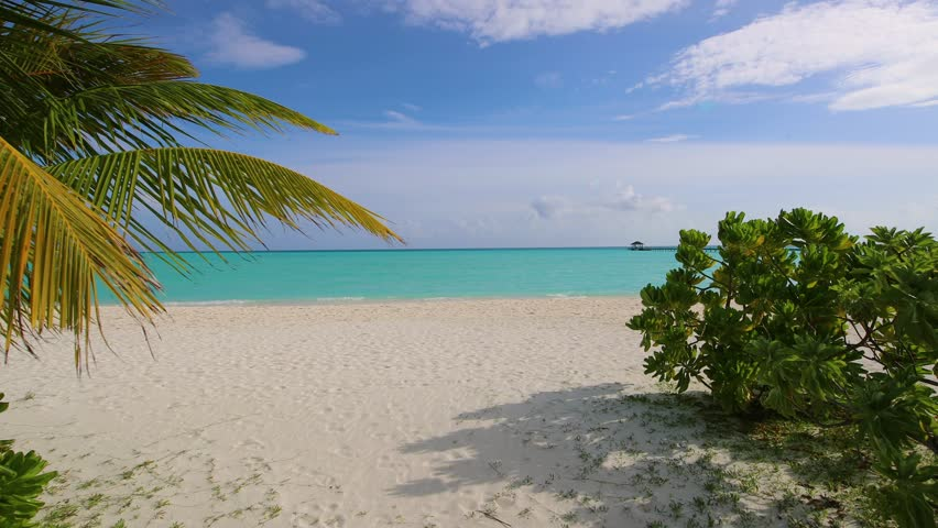 Arrival to the beach with bushes, golden sand, wooden pier and parasol in water, Holiday Island Resort in Maldives. View on beach, lagoon and pier through bushes in Maldives | Shutterstock HD Video #1016762059