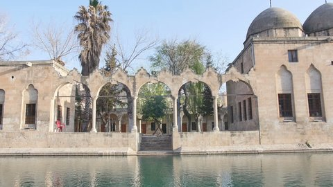 Balikligol, Pool of Sacred Fish, Pool of Abraham, Sanliurfa Turkey. Camera makes a tilt move from the mosque to the pool of fish.