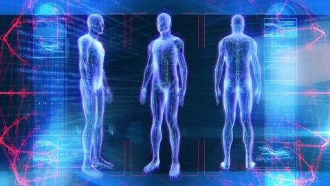 Human Male Anatomy 3D Animation Biology Science Technology