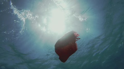 Underwater Shot Of A Red Plastic Shopping Bag Floating Beneath The Sea Surface. Pollution Of The Oceans.