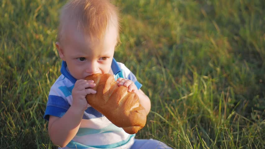 412b84f59657 Funny blonde toddler boy eating tasty bread sitting in green grass outdoor.