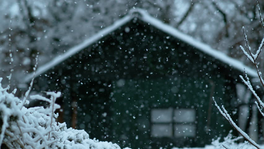 SLOW MOTION, DOF: Cinematic shot of a wooden shack in the woods on a beautiful snowy day. Lonely green hut in the middle of the forest weathering the snowfall during a cold winter. Winter wonderland. | Shutterstock HD Video #1017733729