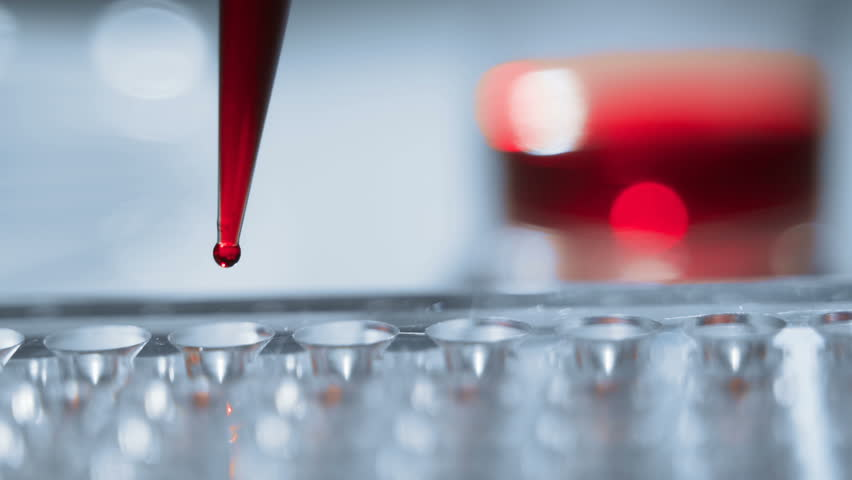 Blood test. pipette with drop of blood | Shutterstock HD Video #1017884779