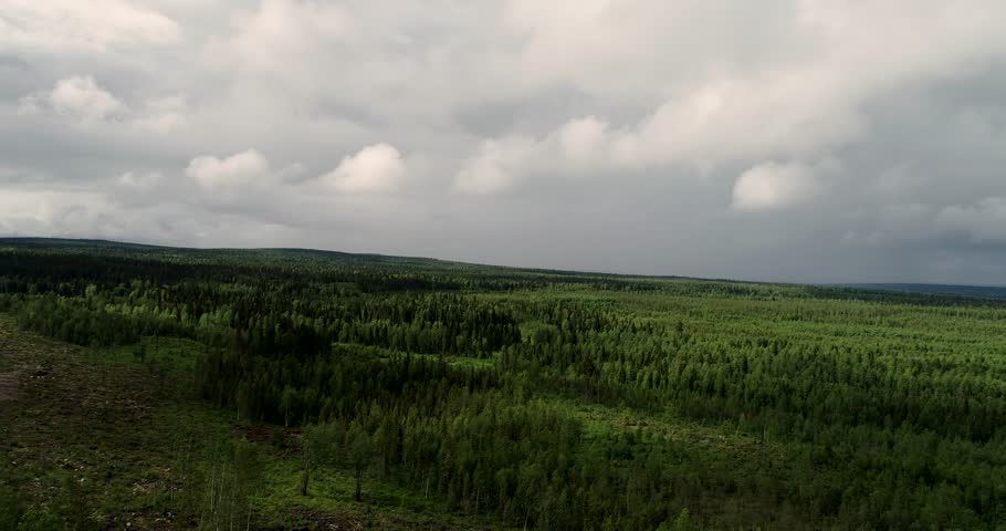 Panning the landscape from air with a drone in the northern Finland over the forest at a summer day | Shutterstock HD Video #1018195729