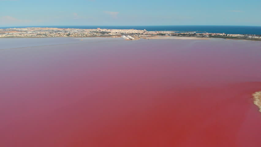 Panoramic aerial view video of Las Salinas, bright color famous place pink lake. Top drone coastline of Torrevieja city and Mediterranean Sea. Costa Blanca. Province of Alicante. Spain