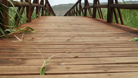 Wooden Walkway Long Grass Close Stock Footage Video 100 Royalty