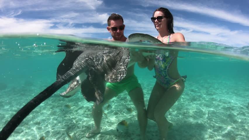 Half underwater - Adult couple swimming with manta rays in Bora Bora   Shutterstock HD Video #1019192029