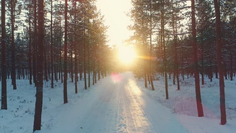 Driving on snow covered road in winter forest at sunset. Slow motion low angle dolly shot.