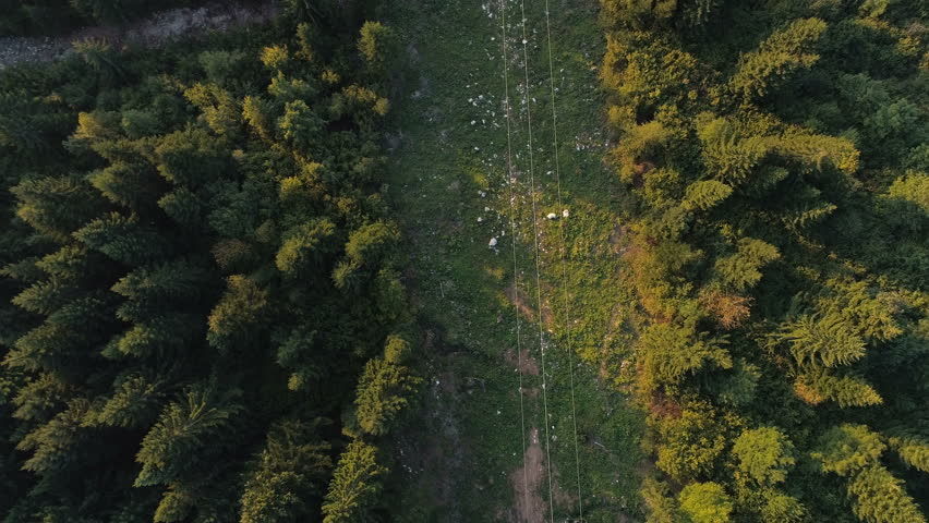 This stock footage features an aerial shot of a cable car moving in slow motion. It was shot by a drone flying over the cables and the forest. You can use this clip as a supplemental footage in etc.