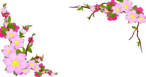 Peach, blooming, Bloom, Flower, Branch, tree, Cherry, Sakura tree Blossoms, Peach blossoms, Cherry blossoms, Spring Blossoms, plum flowers dissolve