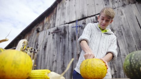 Boy on farm cleaning pumpkin insides with spoon HD. Low angle sliding view of boy working with pumpkin on table and other pumpkins in front. Wooden retro door in background