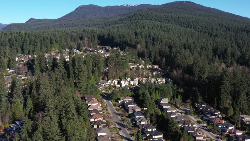 A perfect neighbourhood. Houses in suburb at Summer in the north America. Luxury houses with nice landscape. Aerial drone view. | Shutterstock HD Video #1020792049