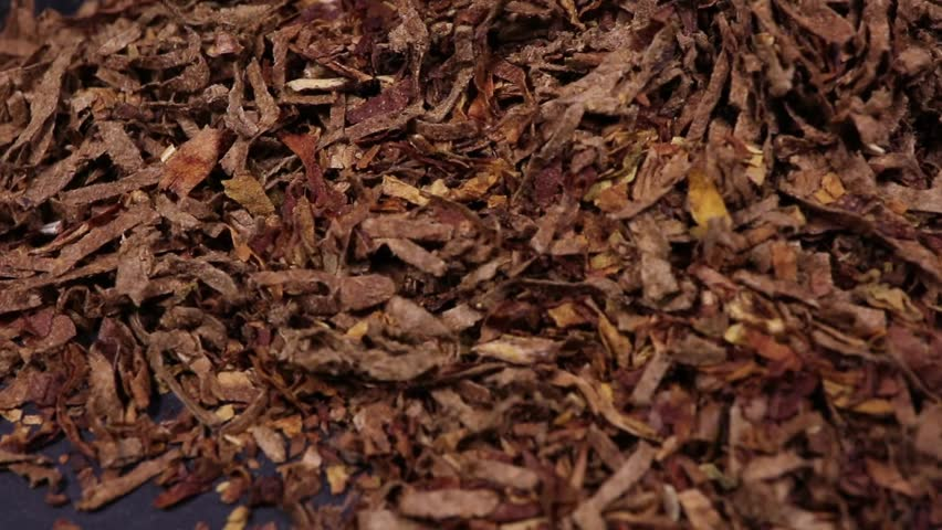 Close-up of dried tobacco on black background | Shutterstock HD Video #1021114849