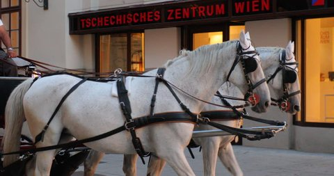 VIENNA, AUSTRIA - SEPTEMBER 18, 2018: Horse-drawn carriage on the street of Vienna. For many tourists, a ride with the two-horse carriage is one of the highlights