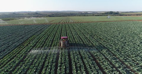 AFRICA,SOUTH AFRICA,CIRCA 2018,Spectacular 4K backlit aerial view directly behind a tractor spraying large scale farming vegetable crops with pesticide
