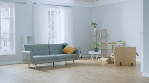 Time-Lapse: Boxes with Stuff, Furniture, Decorations Appearing in the Cozy Modern Apartment. Room Furnishing Concept.