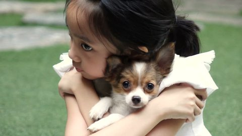 Slow motion shot of little girl and her chihuahua puppy
