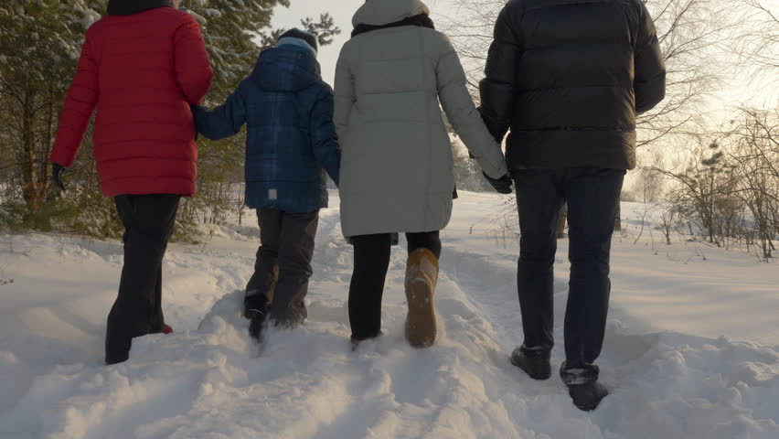 Family walking in the winter park. Rear view family holding together their hands and walking in the winter forest. Slow motion
