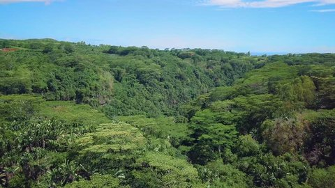 Beautiful views of Chamarel hills, tropical rainforests and valleys, Mauritius island. Flight above Chamarel nature park.