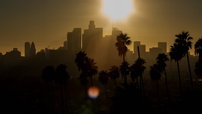 Downtown Los Angeles Silhouette and Palm Trees Sunset Timelapse | Shutterstock HD Video #1022466709