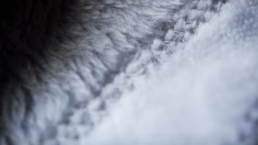 Soft furry grey texture extreme close up stock footage