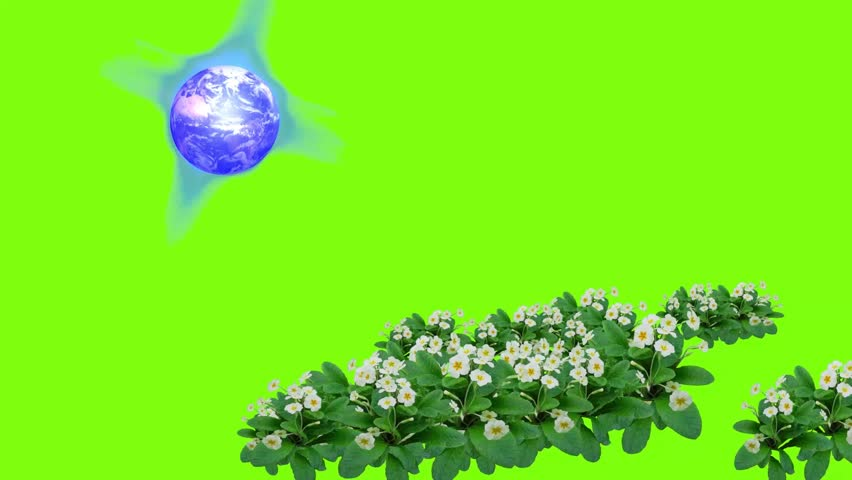Animated Easter message with flowers a green screen background and a moving Easter text message.  | Shutterstock HD Video #1022812669